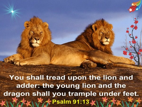 VERSE 13 WITH YOUR FEET YOU WILL CRUSH LIONS AND SNAKES KJV