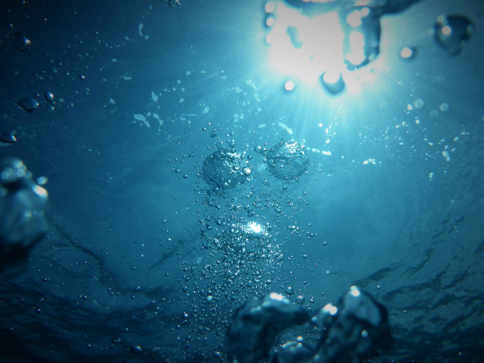 curiosities-about-the-water-signs-cancer-scorpio-and-pisces