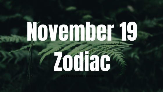 November 19 Scorpio Zodiac Sign Star Sign Compatibility Birthday Horoscope