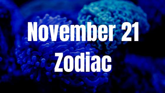 november-21-birthday-horoscope