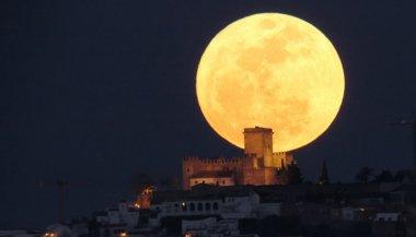balsamic-moon