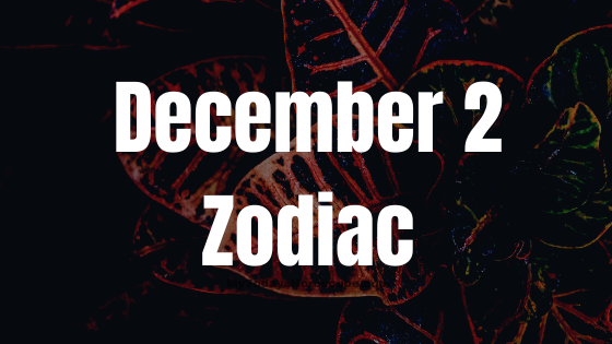 December 2 Zodiac Sign Horoscope Compatibility Personality Love Career