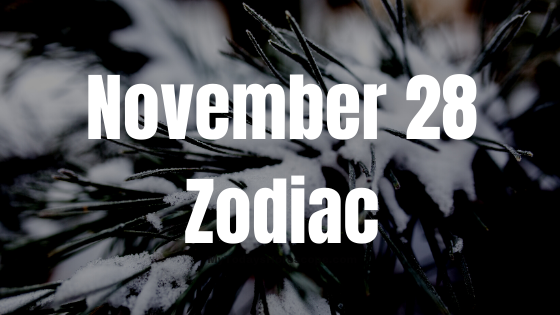 November 28 Sagittarius Zodiac Sign Star Sign Compatibility Birthday Horoscope
