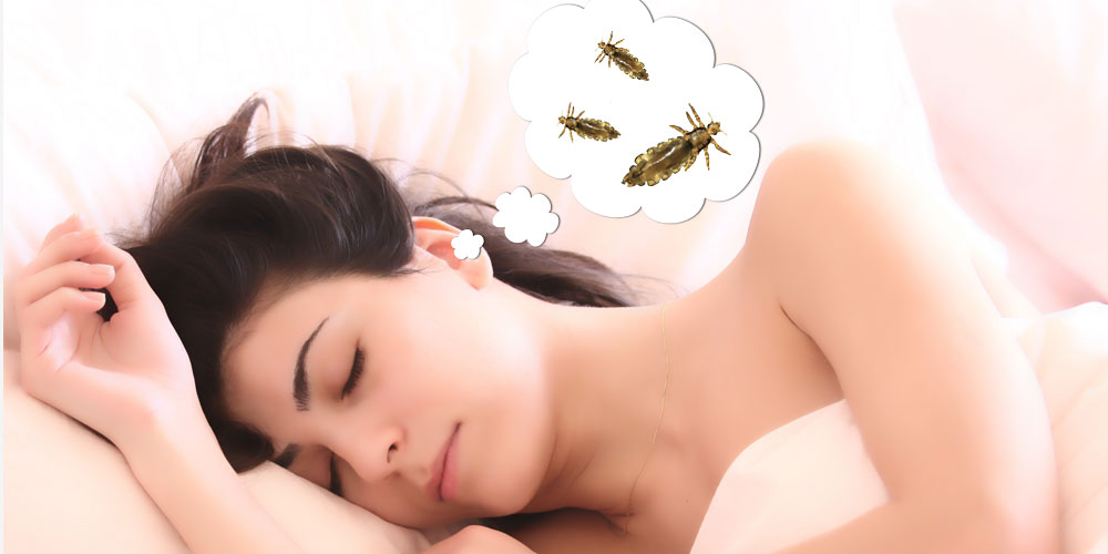 dream-about-lice