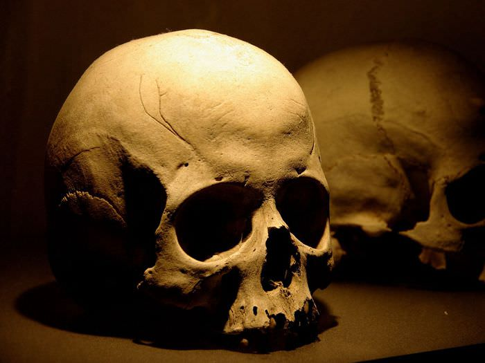 meaning-of-dreaming-with-skulls