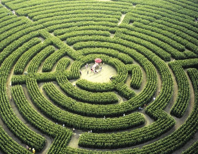 what-does-it-mean-to-dream-of-a-labyrinth