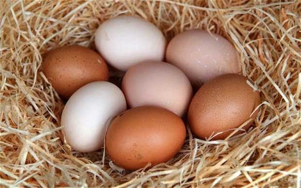 what-does-it-mean-to-dream-of-eggs