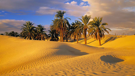 meaning-of-dreaming-about-desert