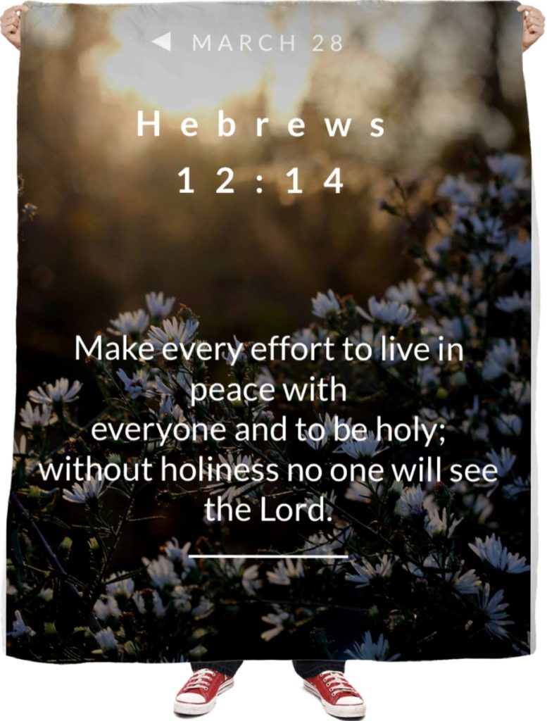 Explanation and Commentary of Hebrews 12:14 NIV