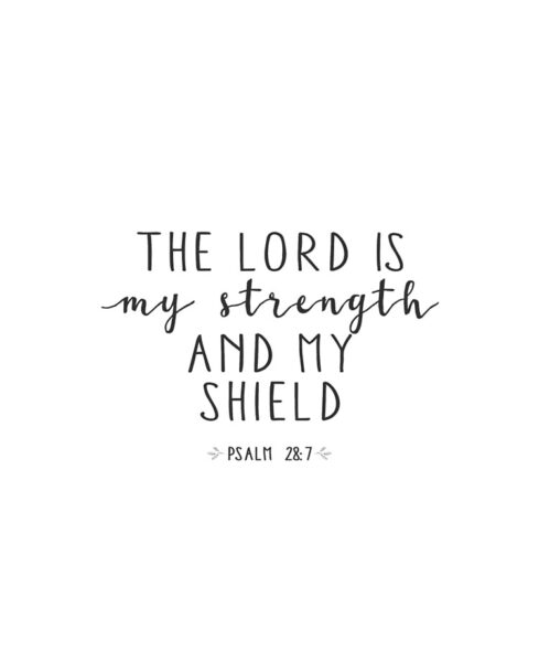 Psalm 28:7 - The LORD is my strength and my shield