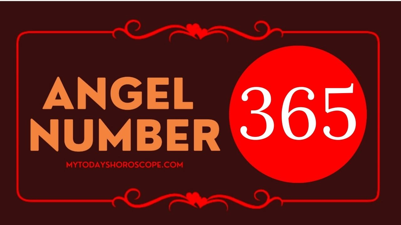 angel-number-365-meaning-for-love-twin-flame-reunion-and-luck