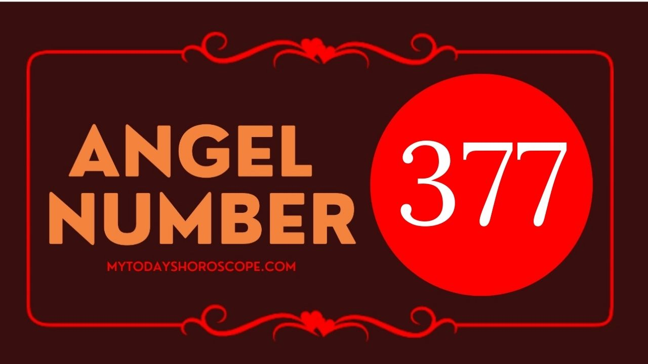 angel-number-377-meaning-for-love-twin-flame-reunion-and-luck