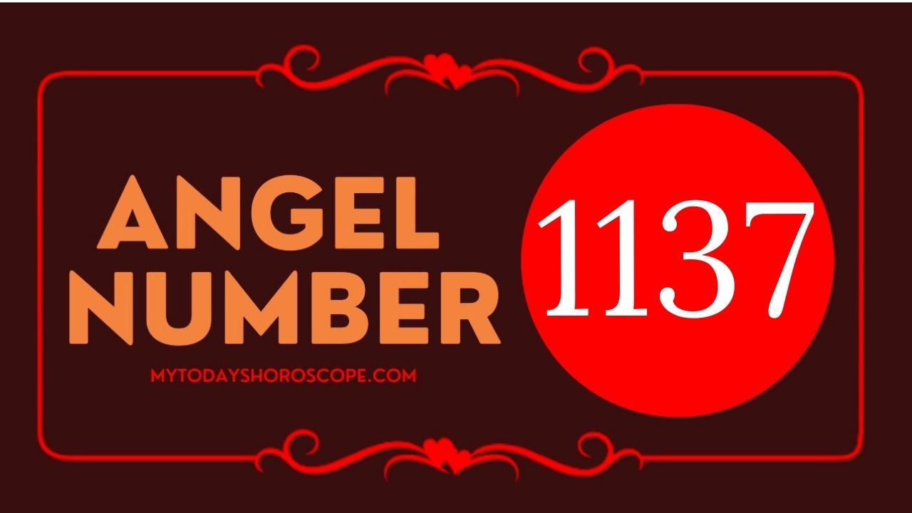 1137-angel-number-twin-flame-reunion-love-meaning-and-luck
