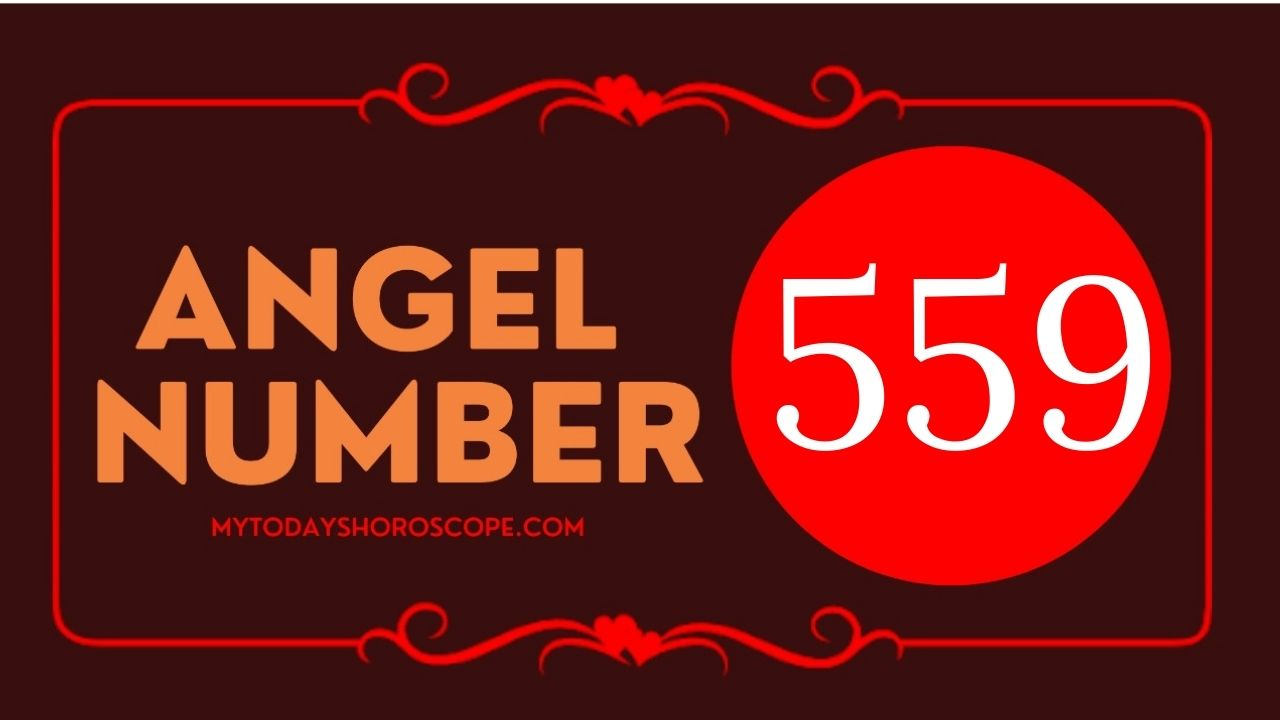 559-angel-number-twin-flame-reunion-love-meaning-and-luck