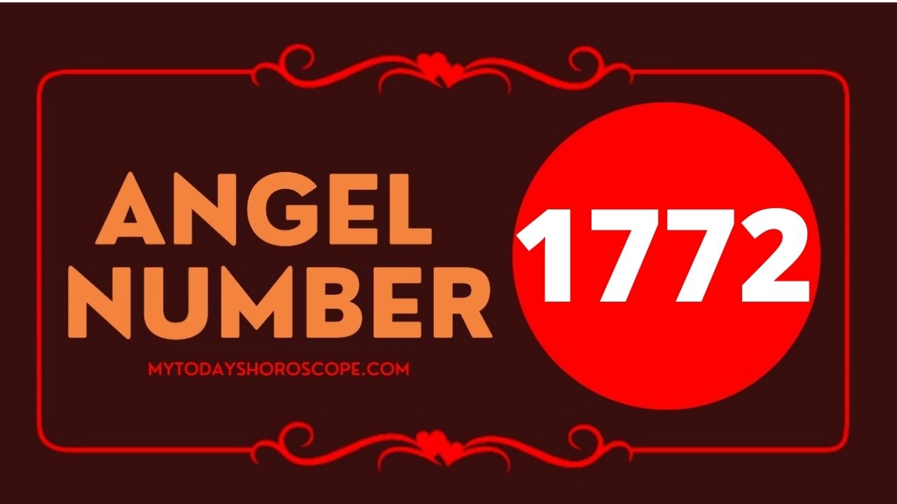 1772-angel-number-twin-flame-reunion-love-meaning-and-luck