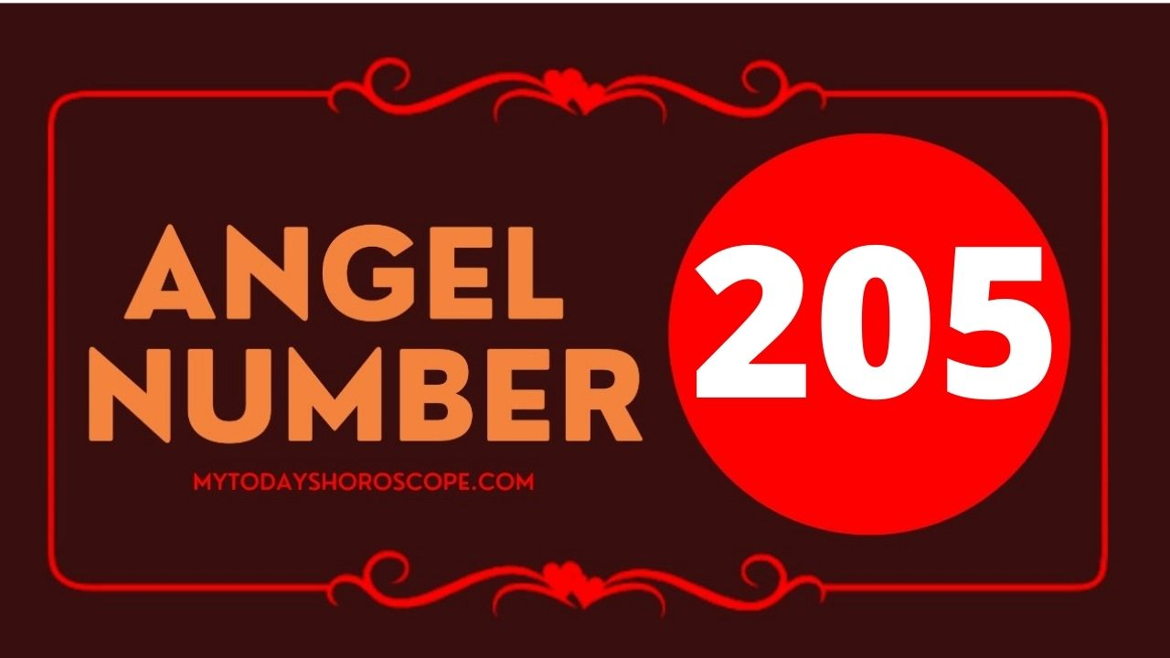 205-angel-number-twin-flame-reunion-love-meaning-and-luck