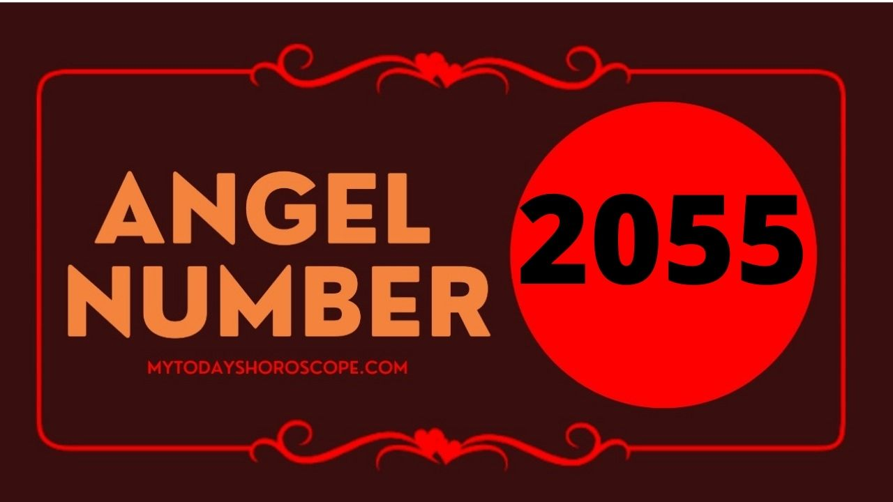 2055-angel-number-twin-flame-reunion-love-meaning-and-luck