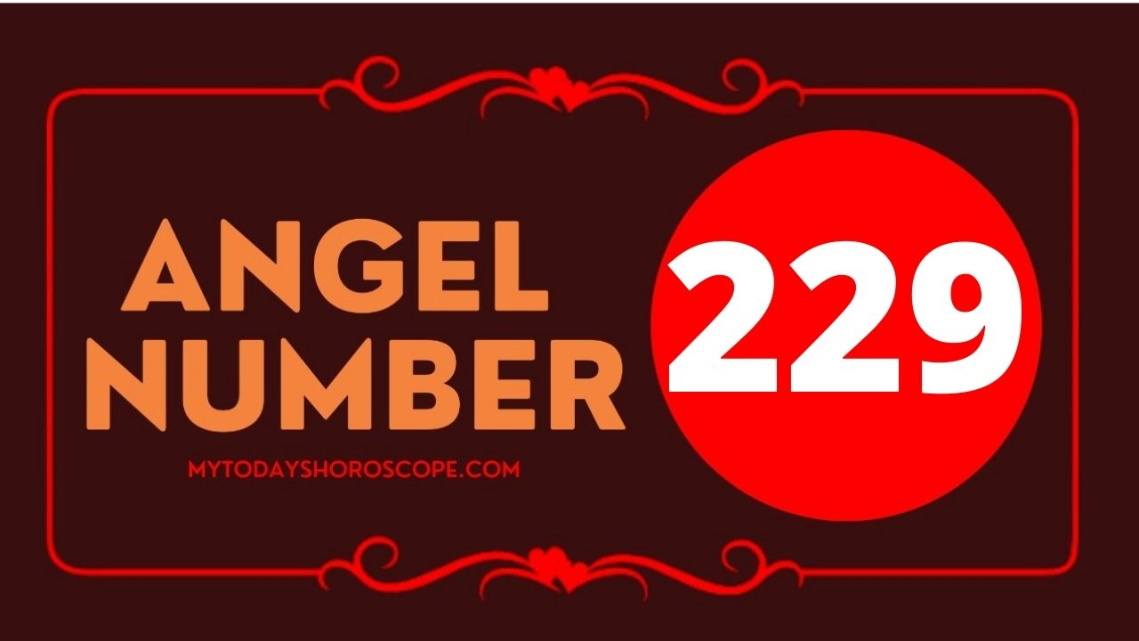 229-angel-number-twin-flame-reunion-love-meaning-and-luck