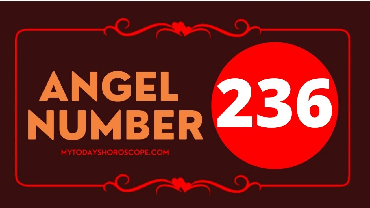 236-angel-number-twin-flame-reunion-love-meaning-and-luck