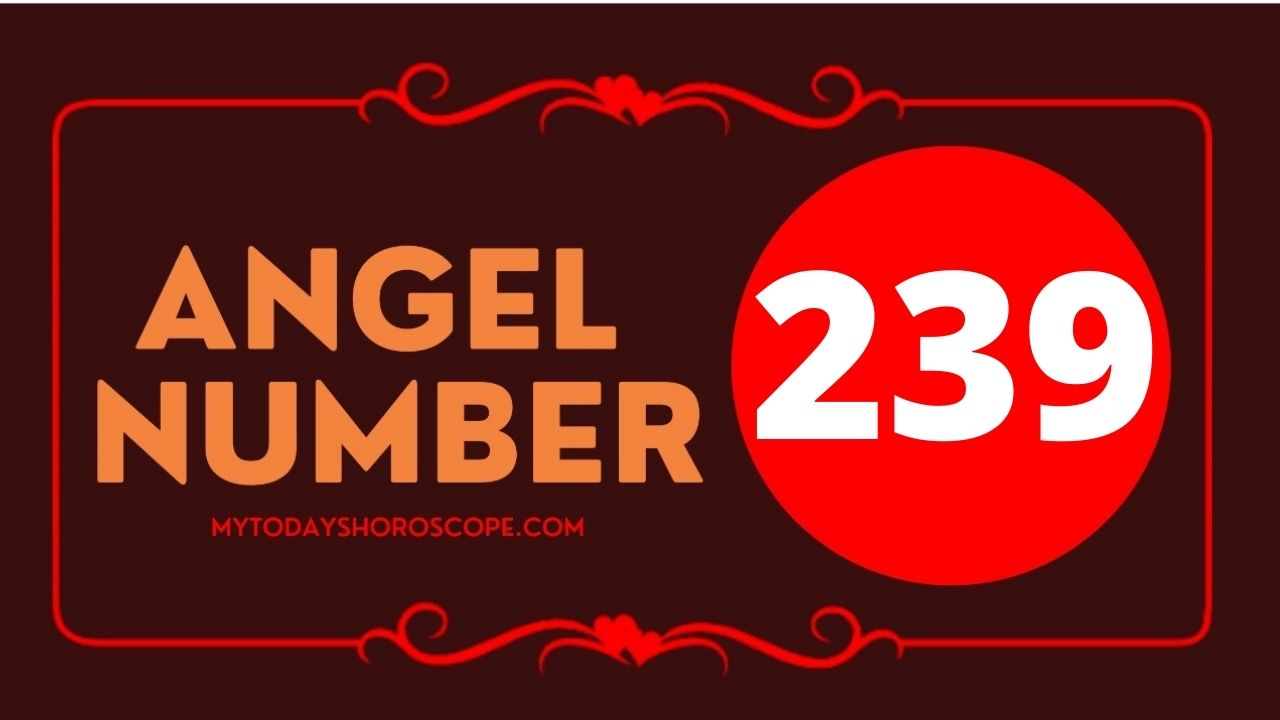 239-angel-number-twin-flame-reunion-love-meaning-and-luck