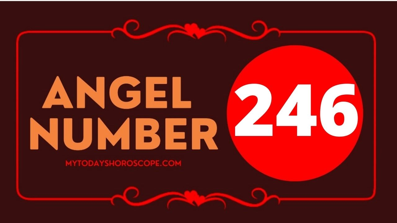246-angel-number-twin-flame-reunion-love-meaning-and-luck