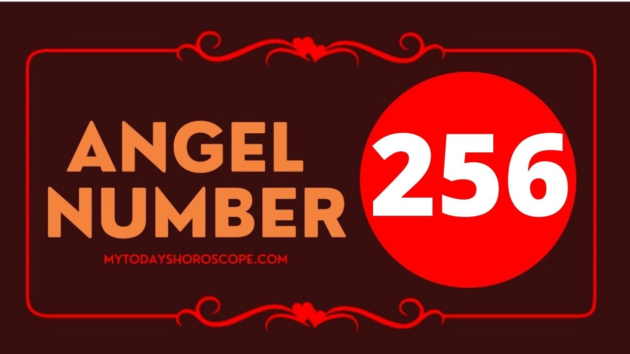 256-angel-number-twin-flame-reunion-love-meaning-and-luck