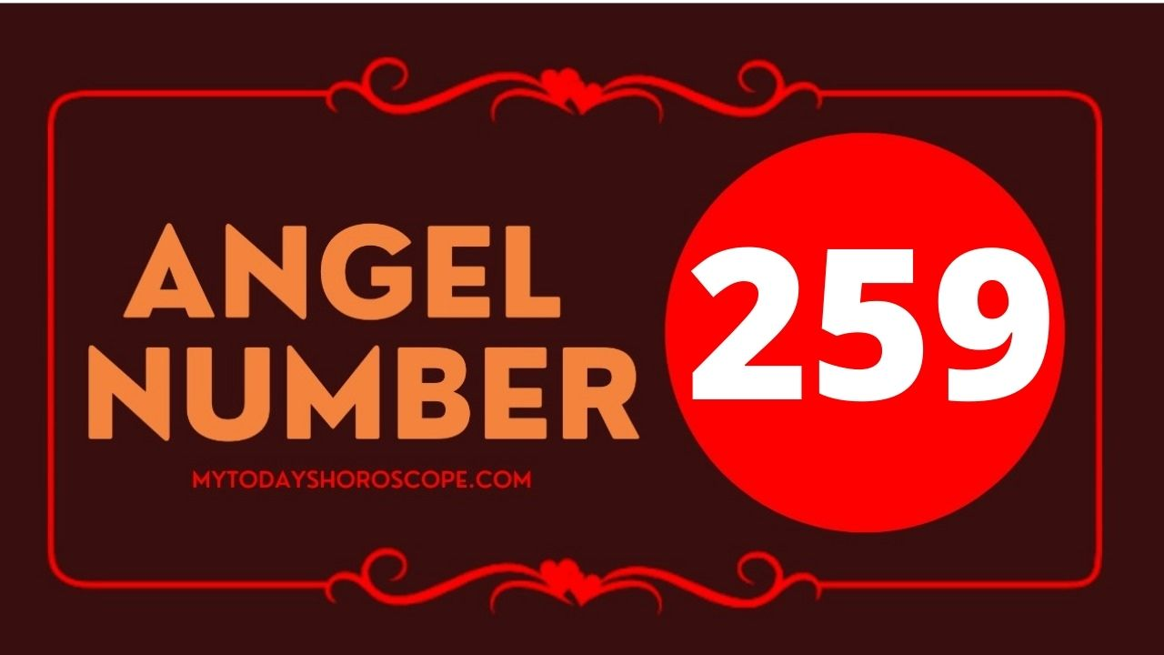 259-angel-number-twin-flame-reunion-love-meaning-and-luck