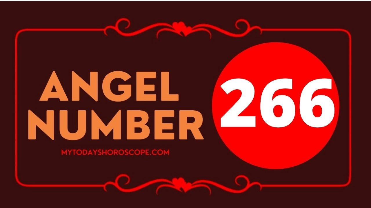 266-angel-number-twin-flame-reunion-love-meaning-and-luck