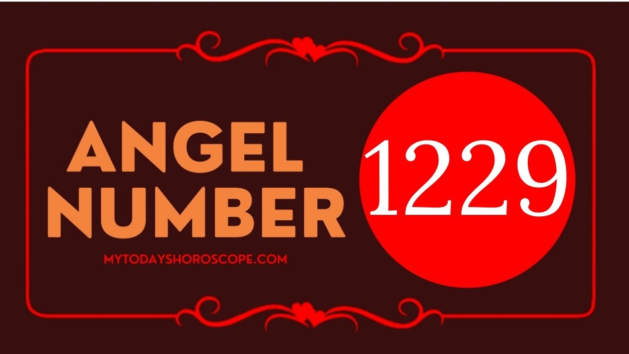 1229-angel-number-twin-flame-reunion-love-meaning-and-luck