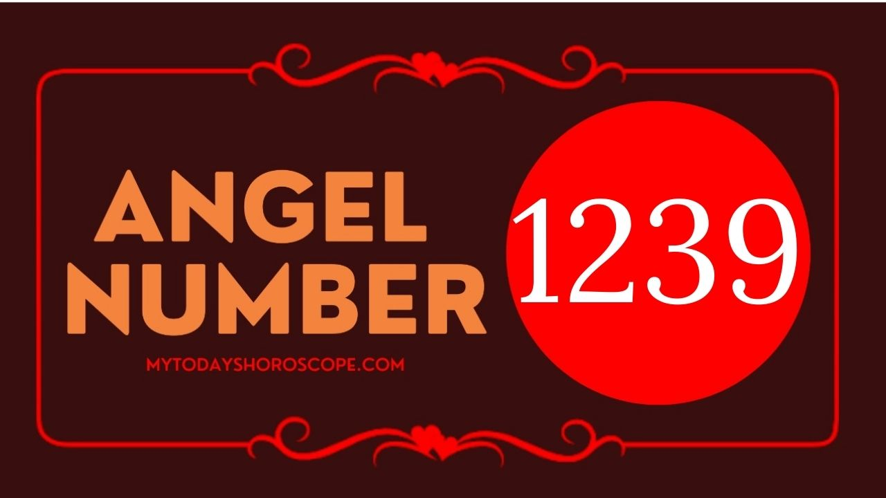 1239-angel-number-twin-flame-reunion-love-meaning-and-luck