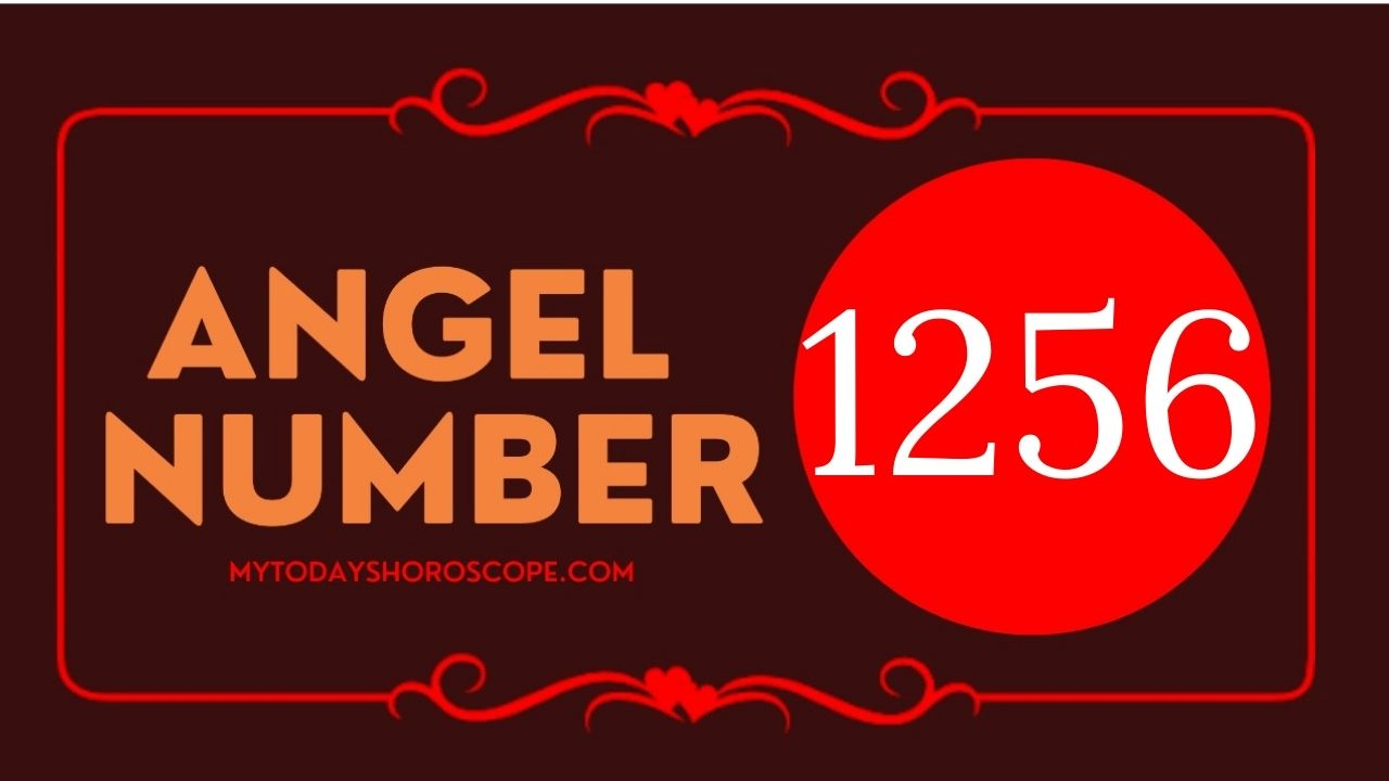 1256-angel-number-twin-flame-reunion-love-meaning-and-luck