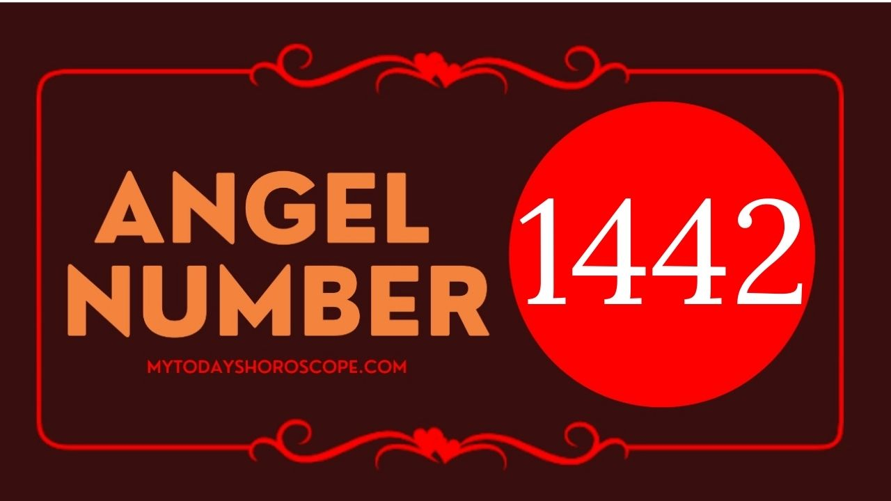 1442-angel-number-twin-flame-reunion-love-meaning-and-luck