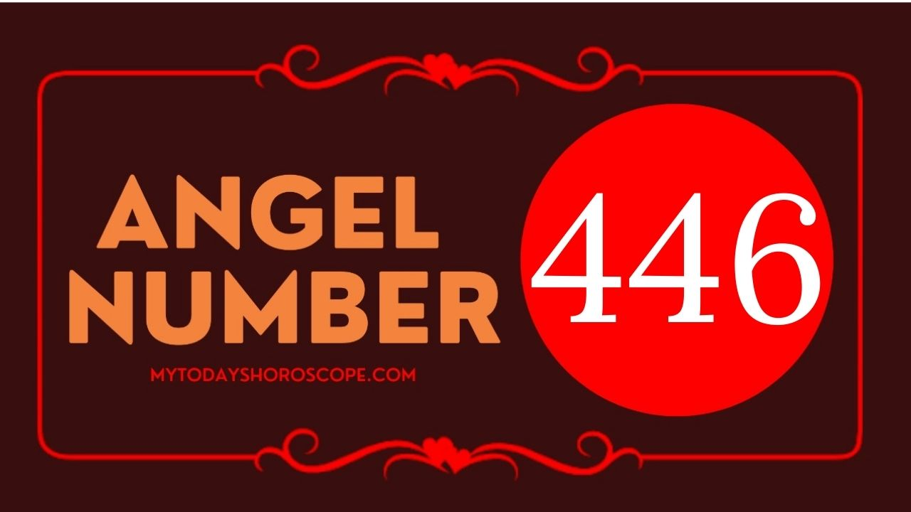 446-angel-number-twin-flame-reunion-love-meaning-and-luck