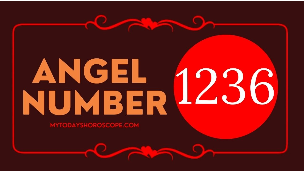 1236-angel-number-twin-flame-reunion-love-meaning-and-luck