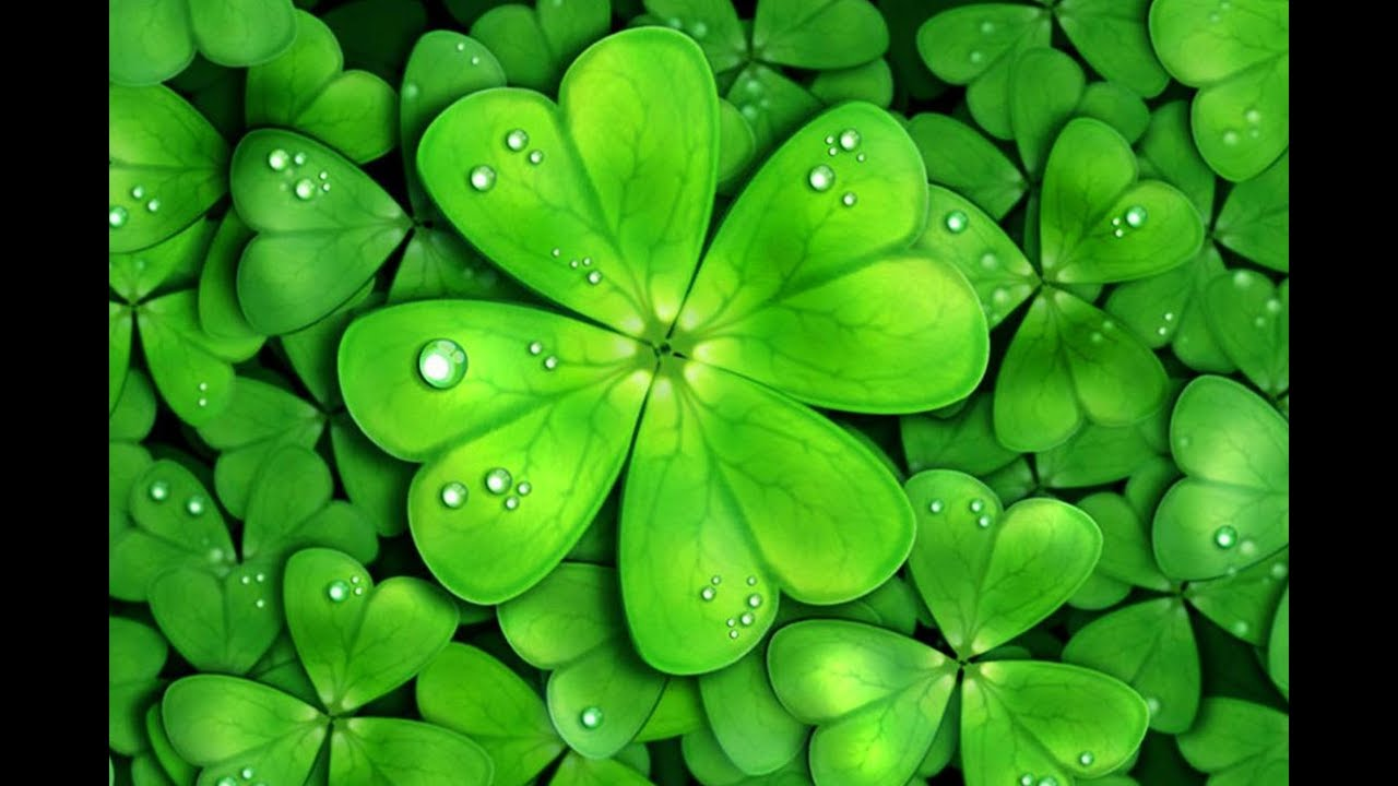 clover-dream-meaning-and-symbolism