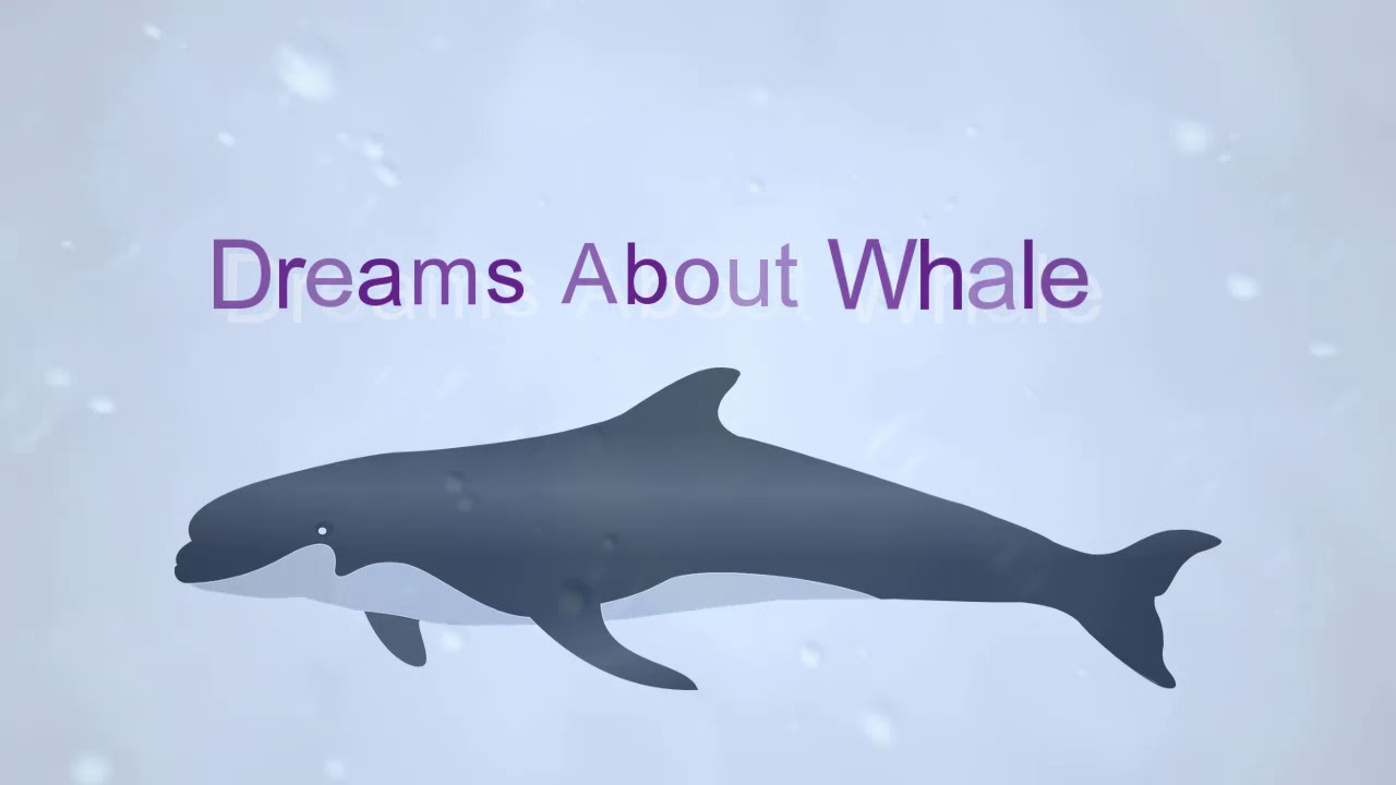 what-do-dreams-of-whales-mean