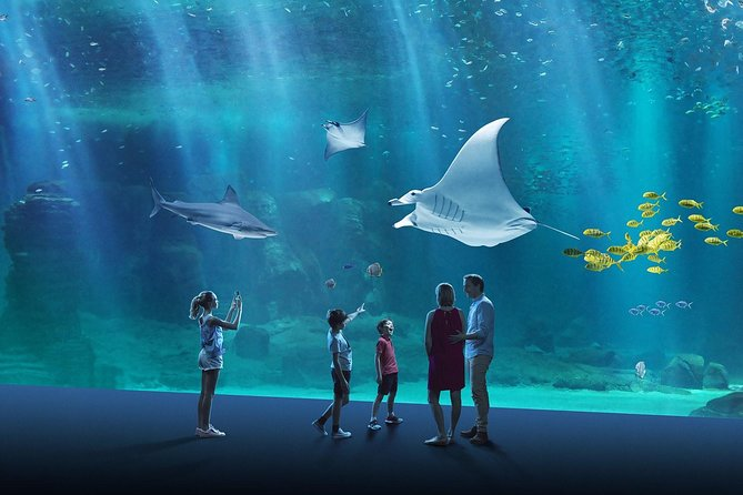 what-does-it-mean-to-dream-about-aquarium