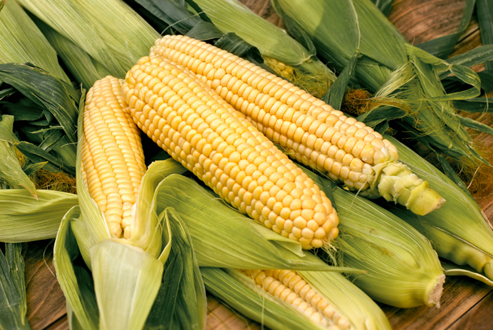 what-does-it-mean-to-dream-about-corn